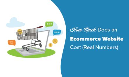 How Much Do Ecommerce Websites Cost in 2019? (Real Numbers)