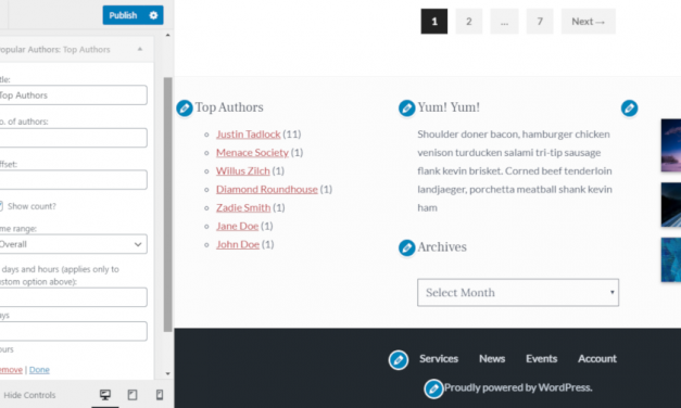 Ajay D'Souza Releases Popular Authors Add-On for Top 10 Plugin