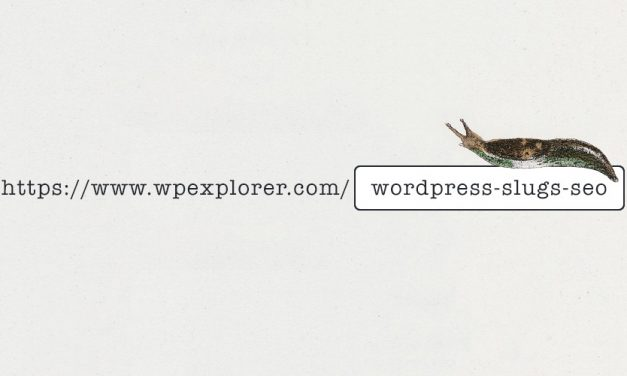 SEO Optimization For WordPress Slugs